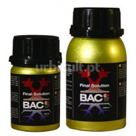 Final Solution BAC