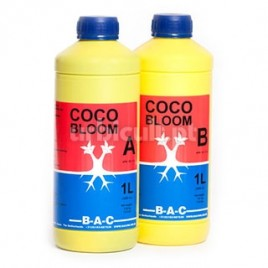 Coco Bloom A&B BAC