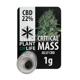 Jelly CBD Critical Mass 22% Plant Of Life 1gr